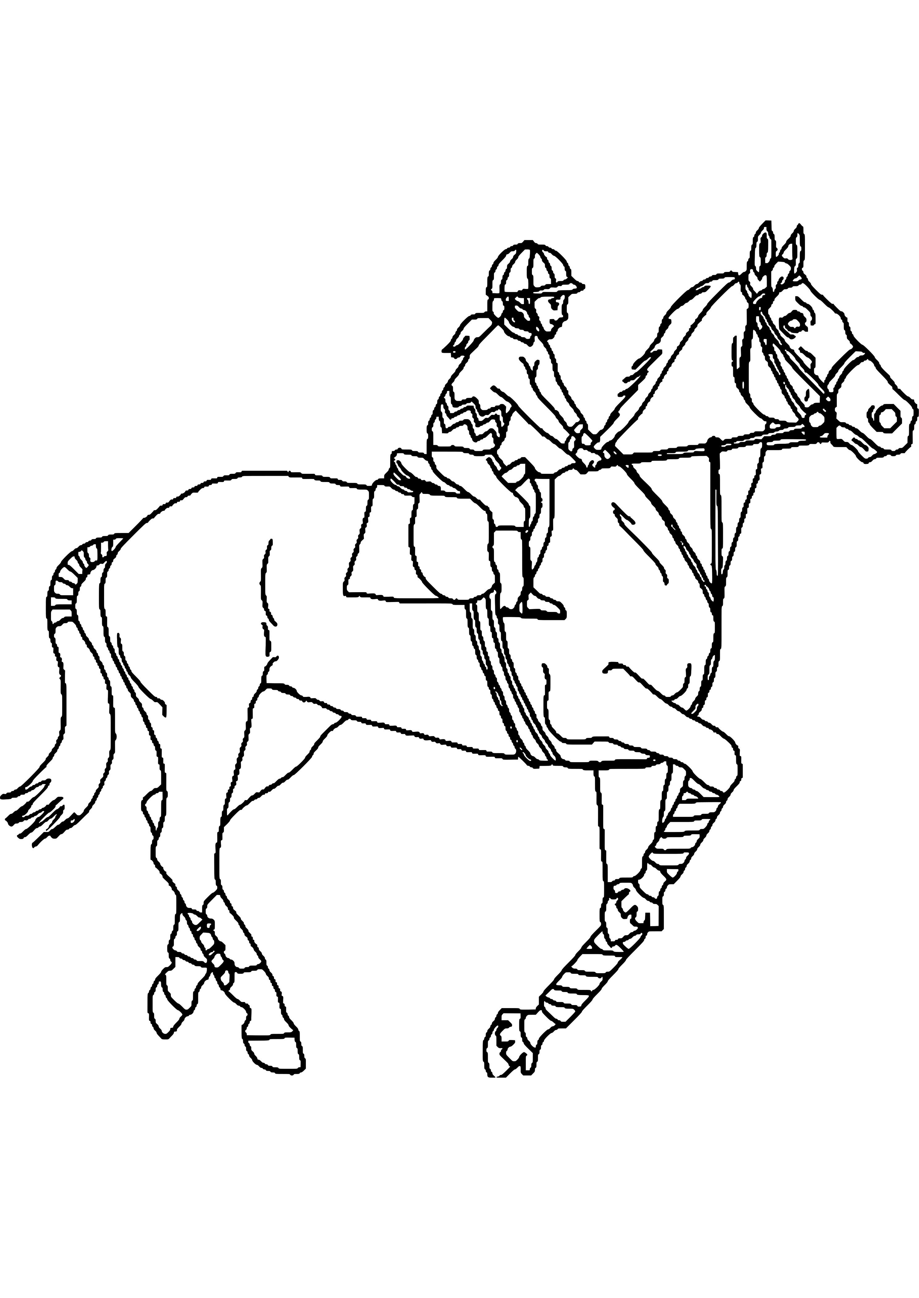 ausmalbilder pferde mit reiterin : malvorlage pferd mit