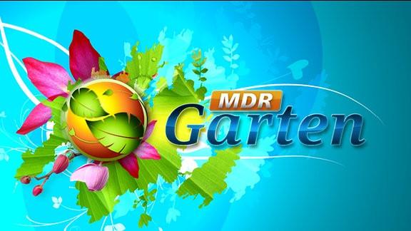 Mdr Garten  Homepage