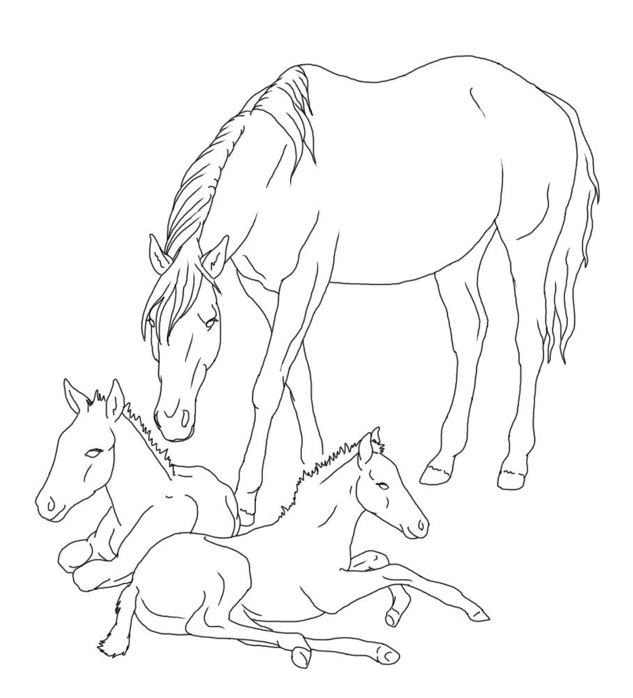 20 ideen für pferde ausmalbilder mit fohlen  beste