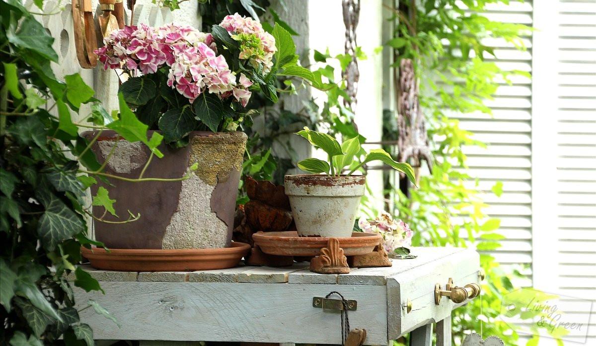 Pflanztisch Diy  Pflanztisch aus Paletten DIY Living & Green