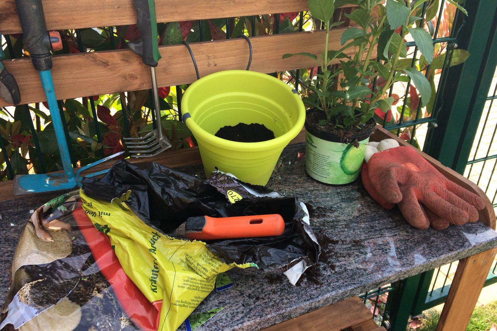 Pflanztisch Diy  DIY Pflanztisch für den Garten selber bauen – Ländchenlust