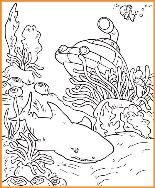 die besten ideen für unterwasser ausmalbilder  beste