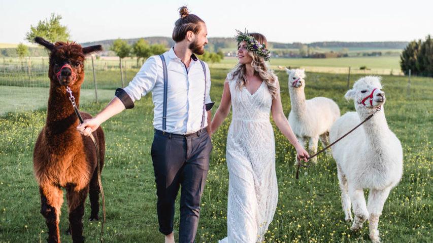 Alpaka Hochzeit  Brautmode von kuess braut