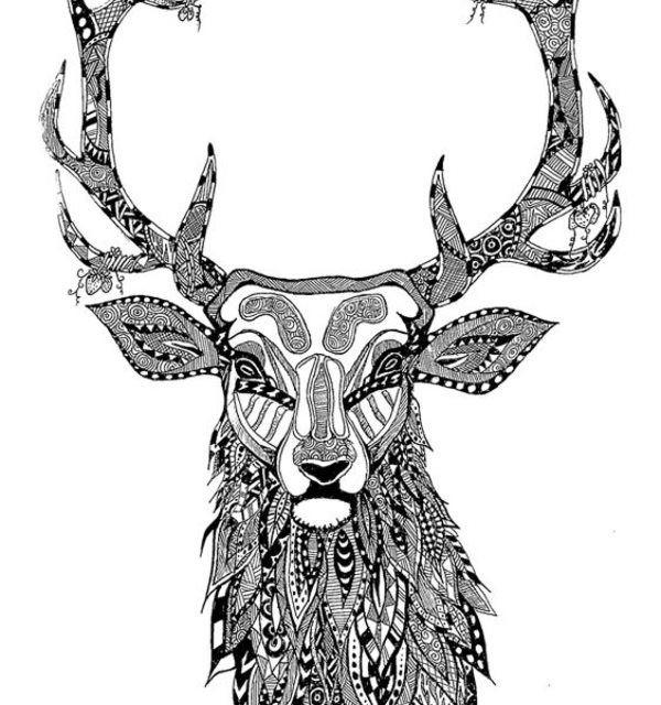 Ausmalbilder Hirsch  Ausmalbilder für erwachsene Hirsch zum ausdrucken