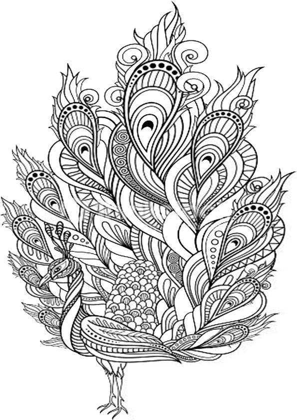 Ausmalbilder Muster  ausmalbilder malvorlagen katze 16