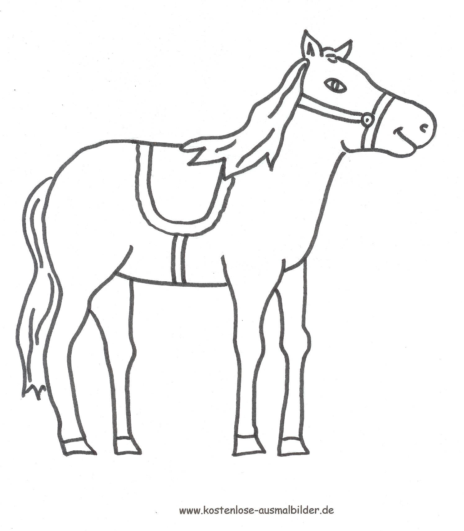 Ausmalbilder Pferd  Ausmalbilder für Kinder Malvorlagen und malbuch