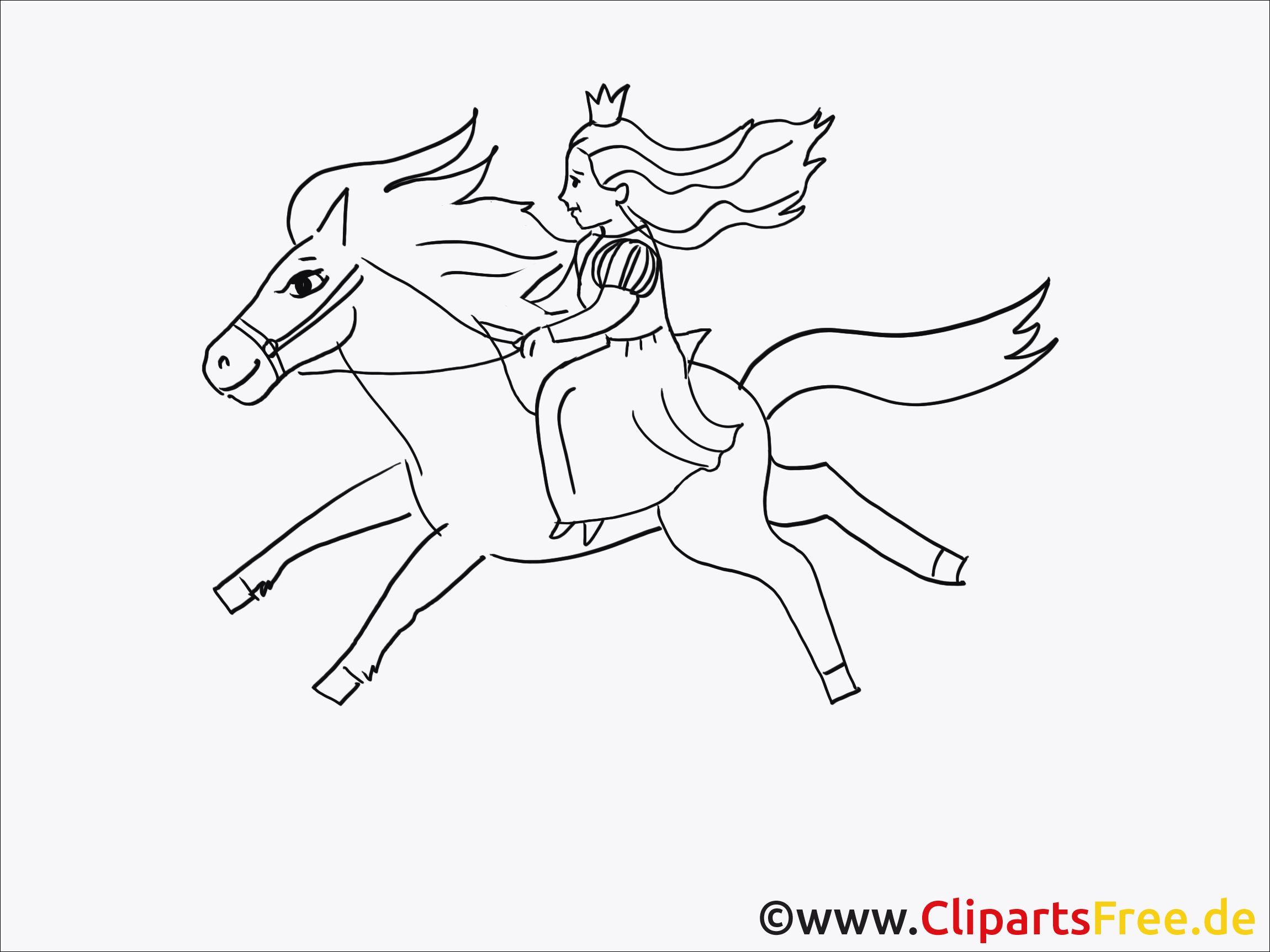 voltigieren ausmalbilder pferde dressur  20 der besten