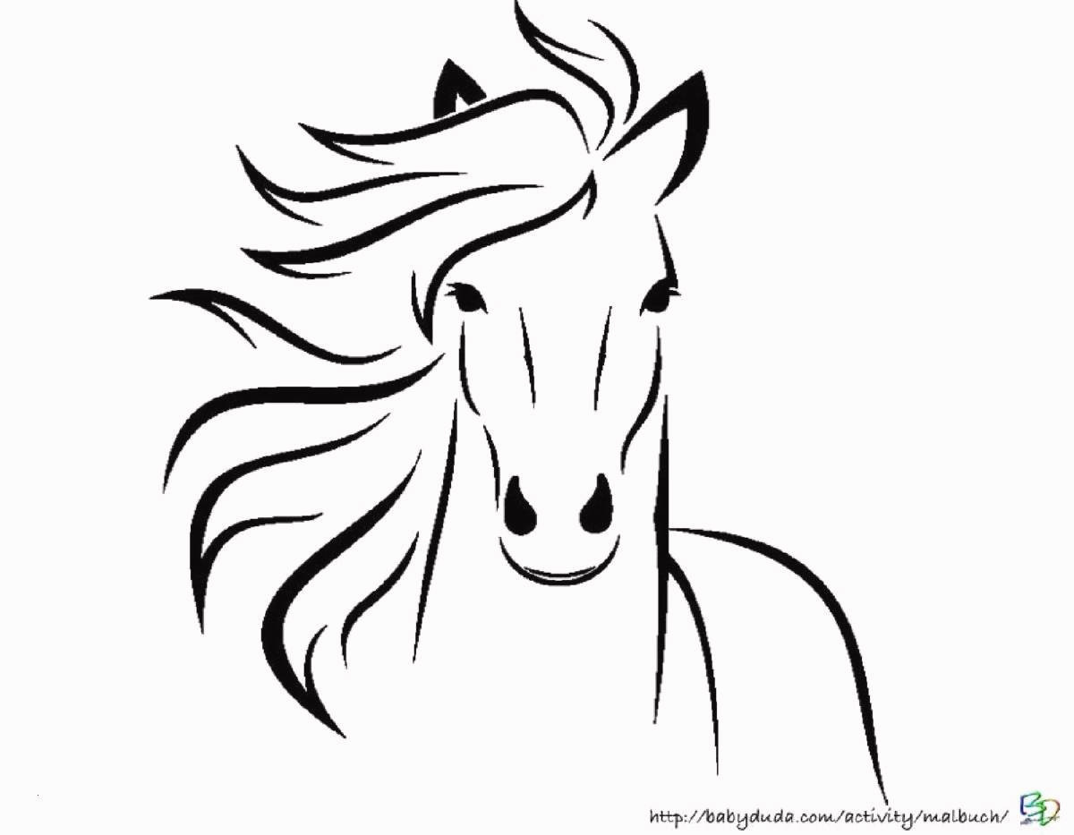 Die 20 Besten Ideen Für Ausmalbilder Pferde Zum Ausdrucken