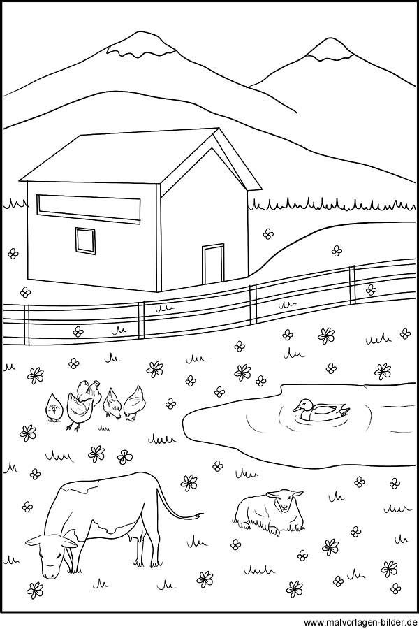 Ausmalbilder Tiere Bauernhof  Ausmalbild Tiere auf dem Bauernhof
