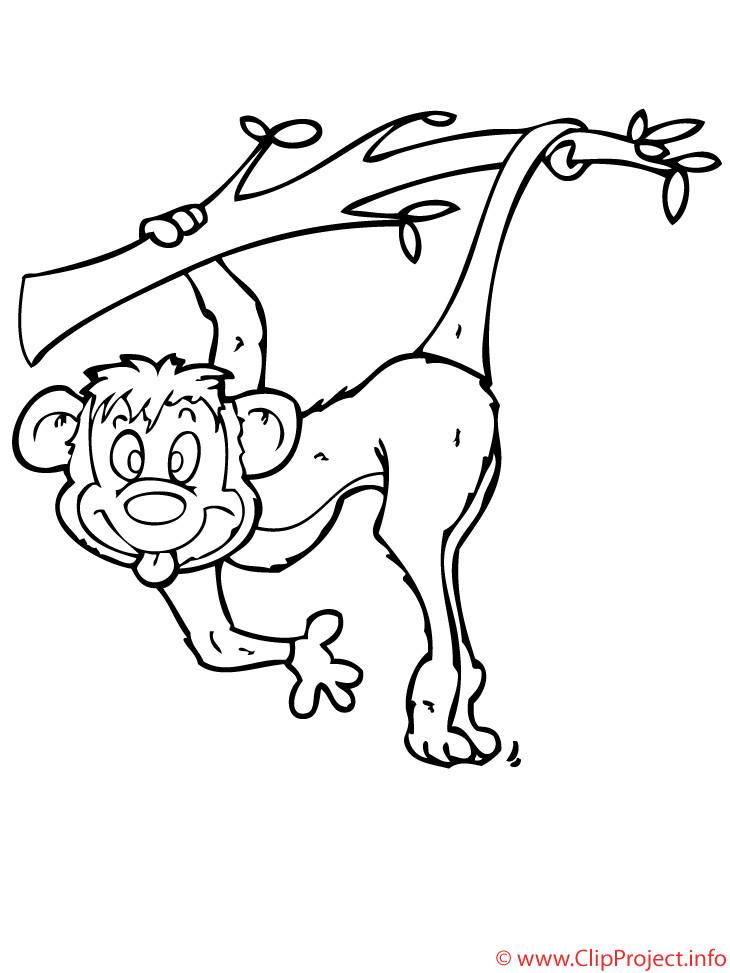 Ausmalbilder Tiere Zoo  Affe Malvorlage gratis Zoo Malvorlagen