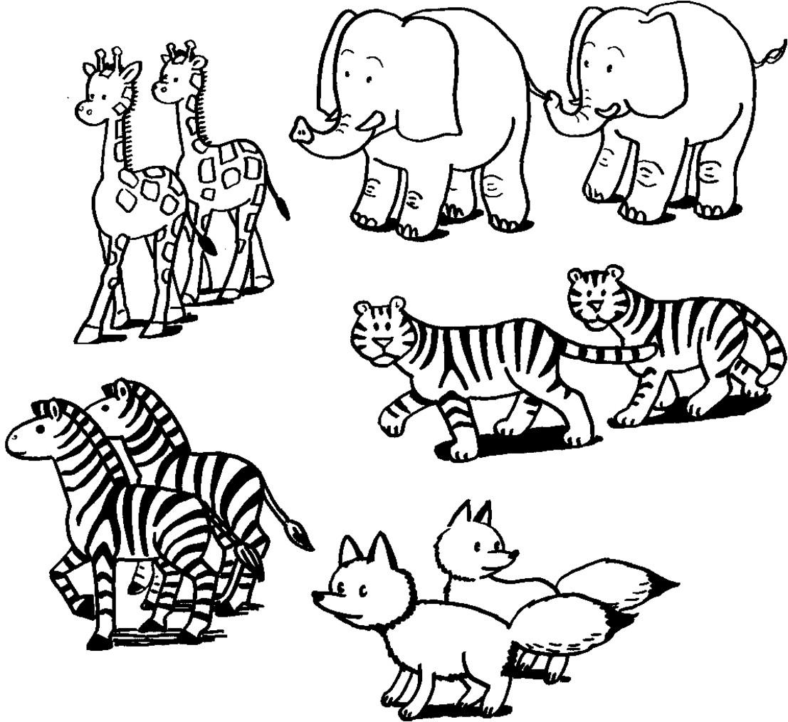 Ausmalbilder Tiere Zoo  Ausmalbilder Tiere 2