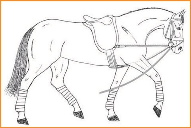 20 der besten ideen für ausmalbilder von pferden  beste