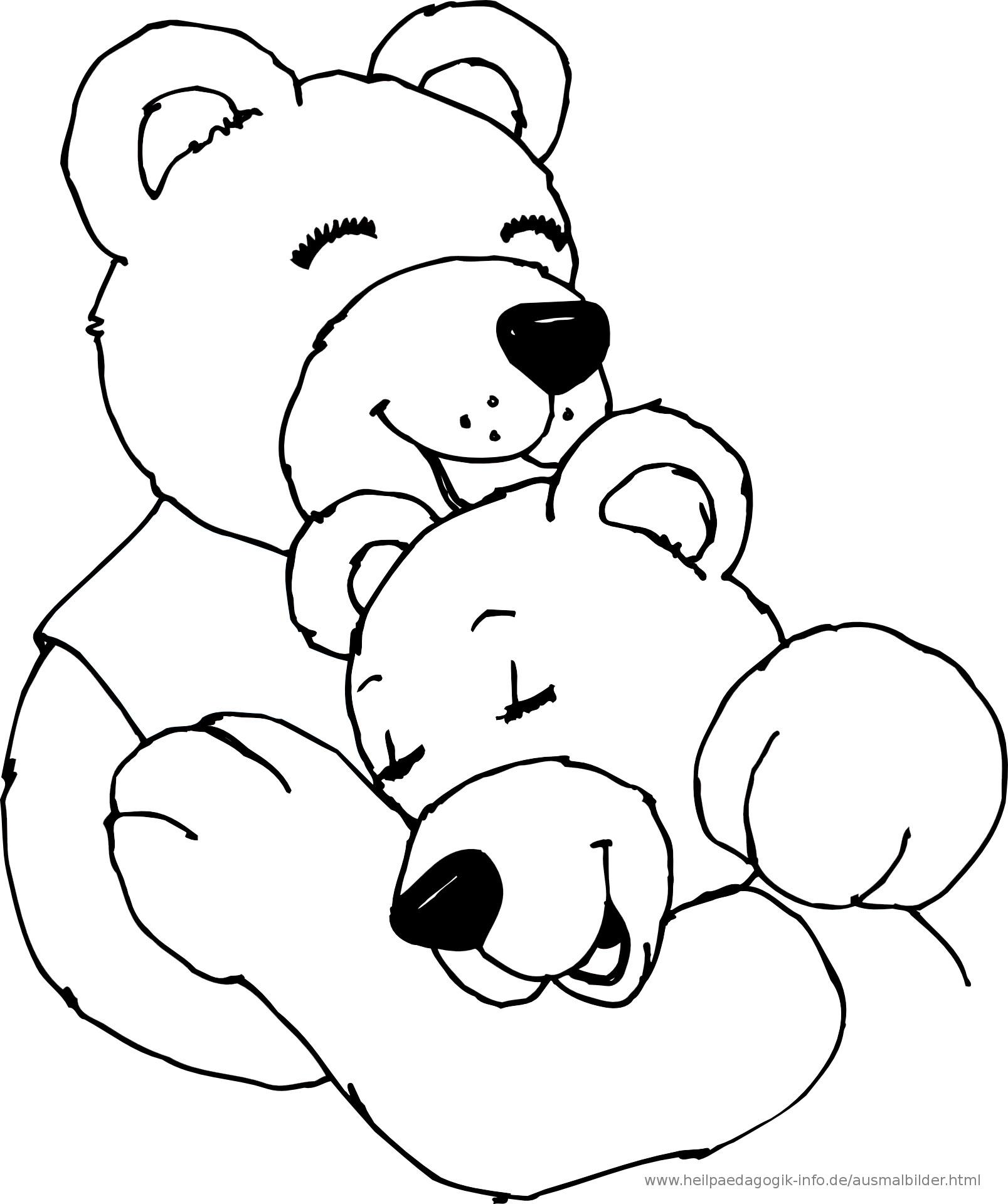 Bären Ausmalbilder  Ausmalbilder sonstige Tiere