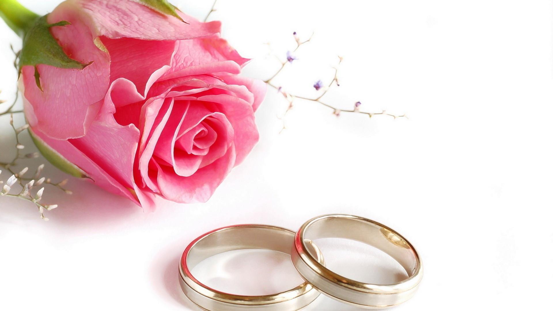 Bilder Hochzeit  Die 59 Besten Hochzeit Hintergrundbilder