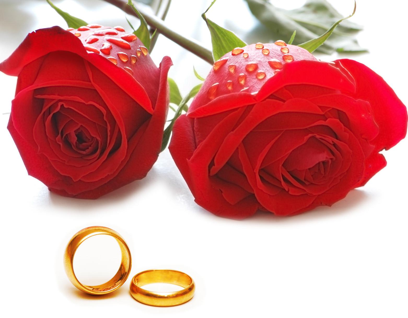 Bilder Hochzeit  Hochzeit