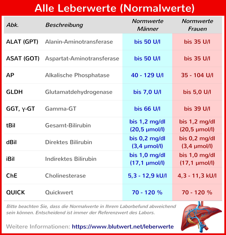Blutwerte Tabelle Abkürzungen