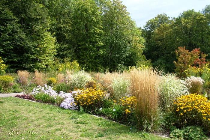Botanischer Garten Ulm  Botanischer Garten Uni Ulm