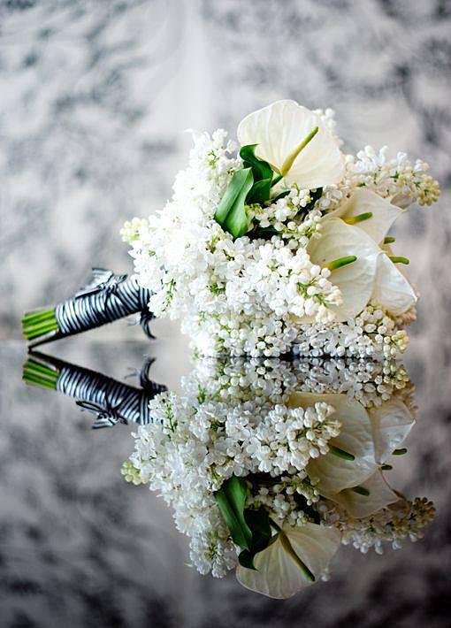 Brautstrauß Weiß  Brautstrauß weiß Bilder Madame