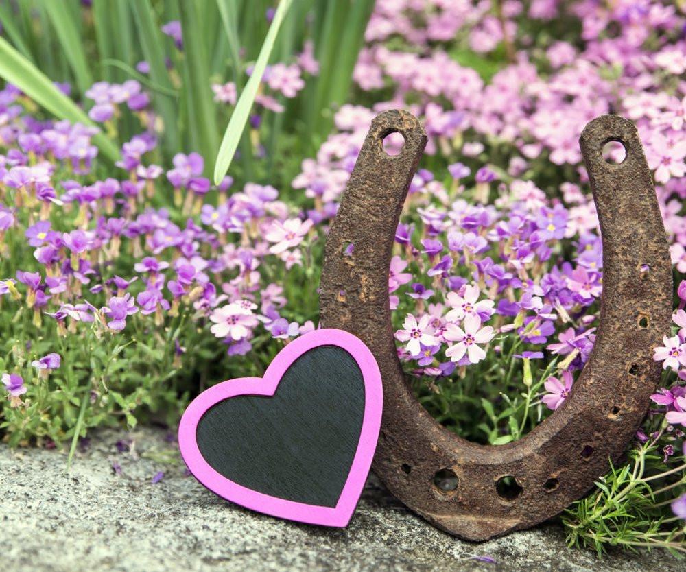 Bronzene Hochzeit  Bronzene Hochzeit