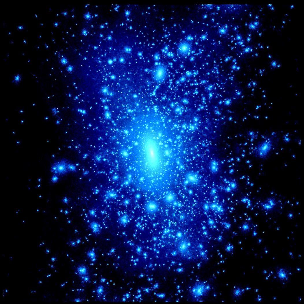 Dark Matter  Nuclear Interaction Group at MIT LNS