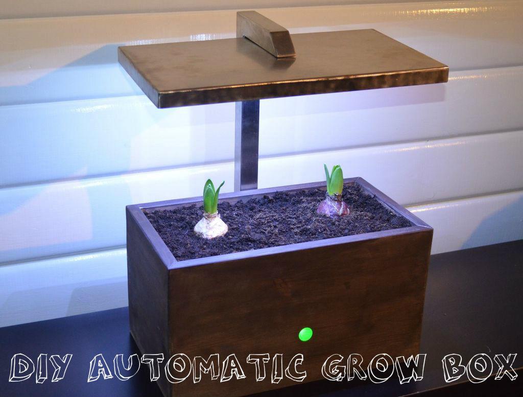 Diy Growbox  DIY Automatic Grow Box