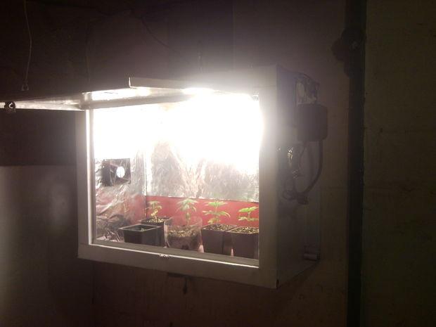 Diy Growbox  12 DIY Grow Boxes to Control the Growing Environment