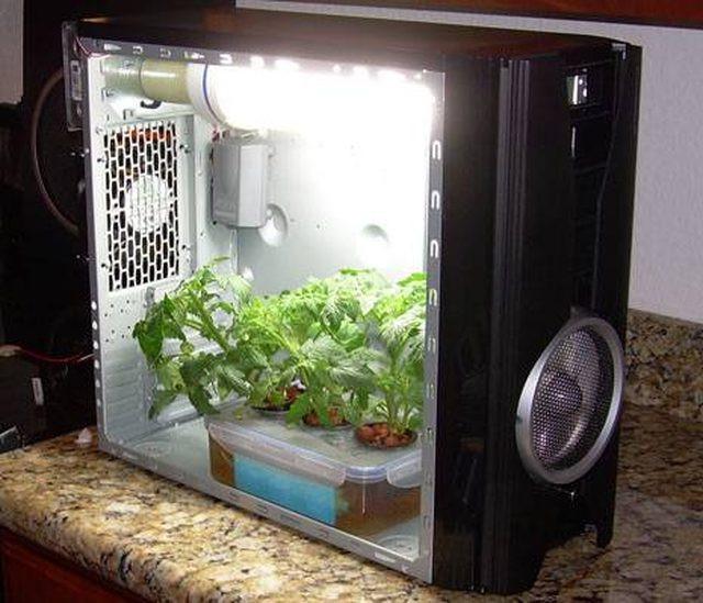 Diy Growbox  How to Build a Simple Grow Box