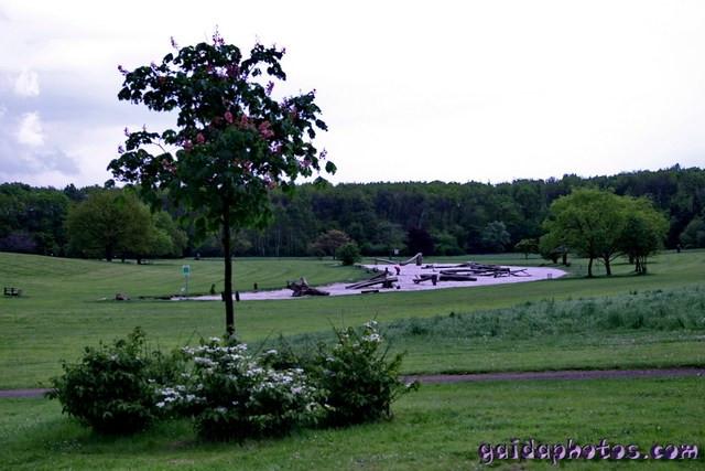 Forstbotanischer Garten Köln  Köln Rodenkirchen Forstbotanischer Garten Fotos