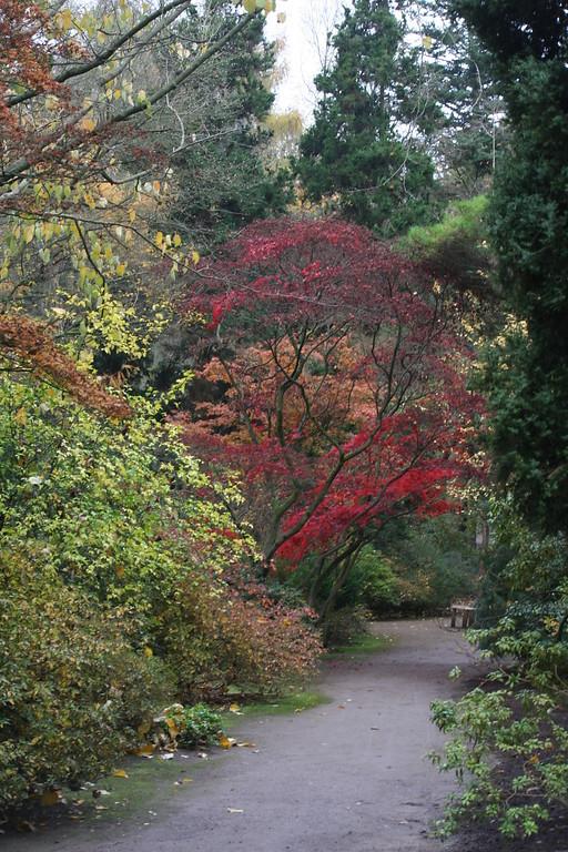 Forstbotanischer Garten Köln  Forstbotanischer Garten mit Friedenswald zwischen