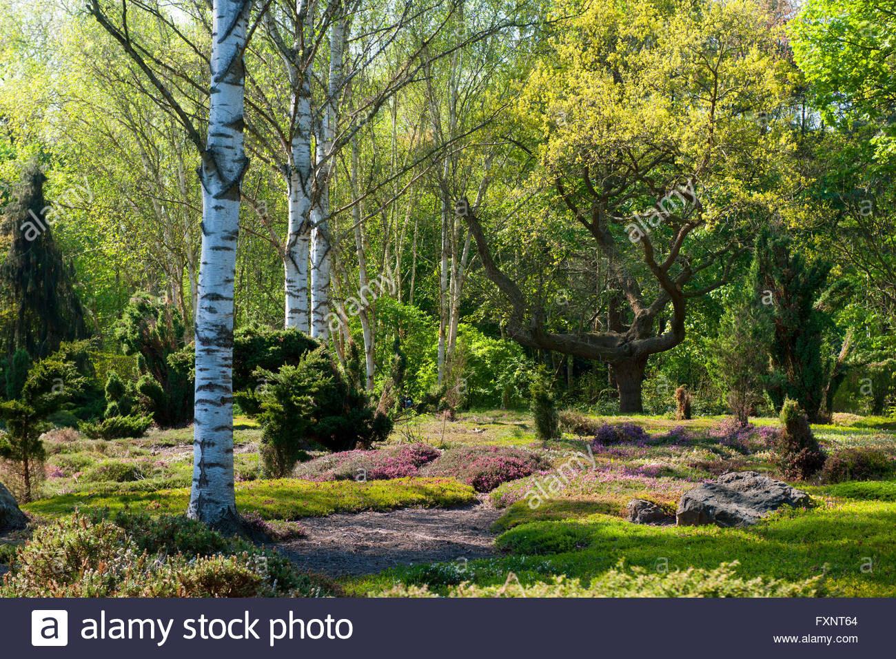 Forstbotanischer Garten Köln  Deutschland Nordrhein Westfalen Köln Rodenkirchen