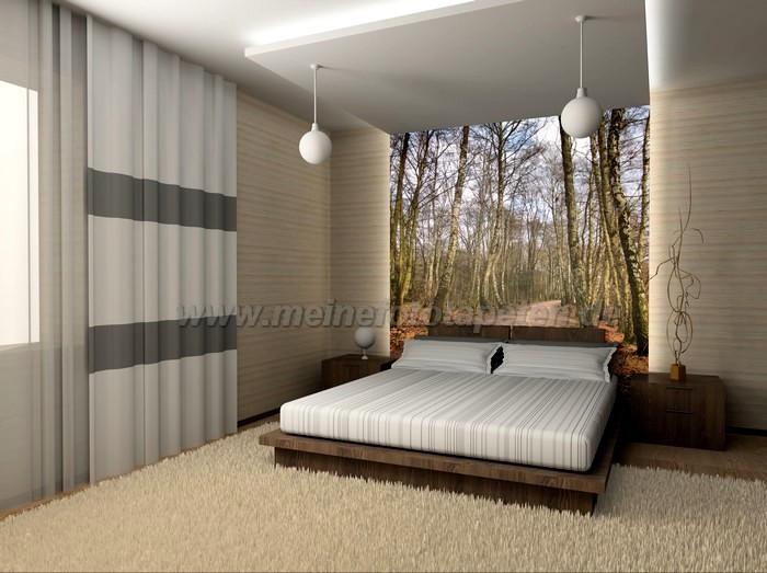 Die Besten Fototapete Wald Schlafzimmer Beste Wohnkultur