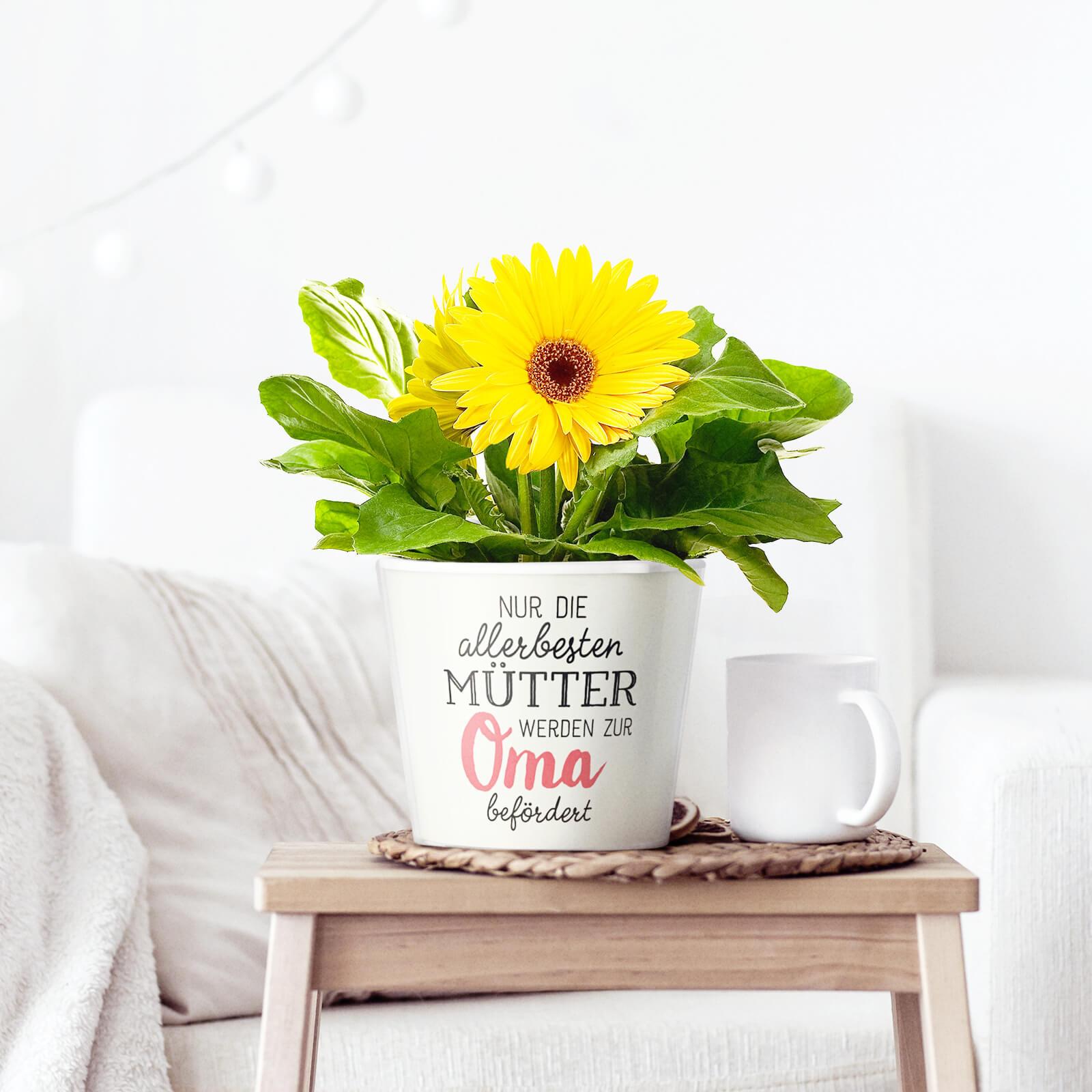Geschenke Für Werdende Großeltern  Geschenke für Oma ein Blumentopf zu jedem Anlass – MyFacepot