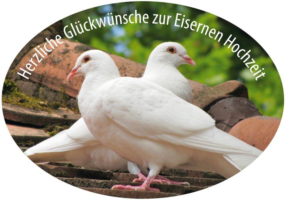 Glückwünsche Zur Eisernen Hochzeit  Grußaufkleber Herzliche Glückwünsche zur Eisernen Hochzeit 8