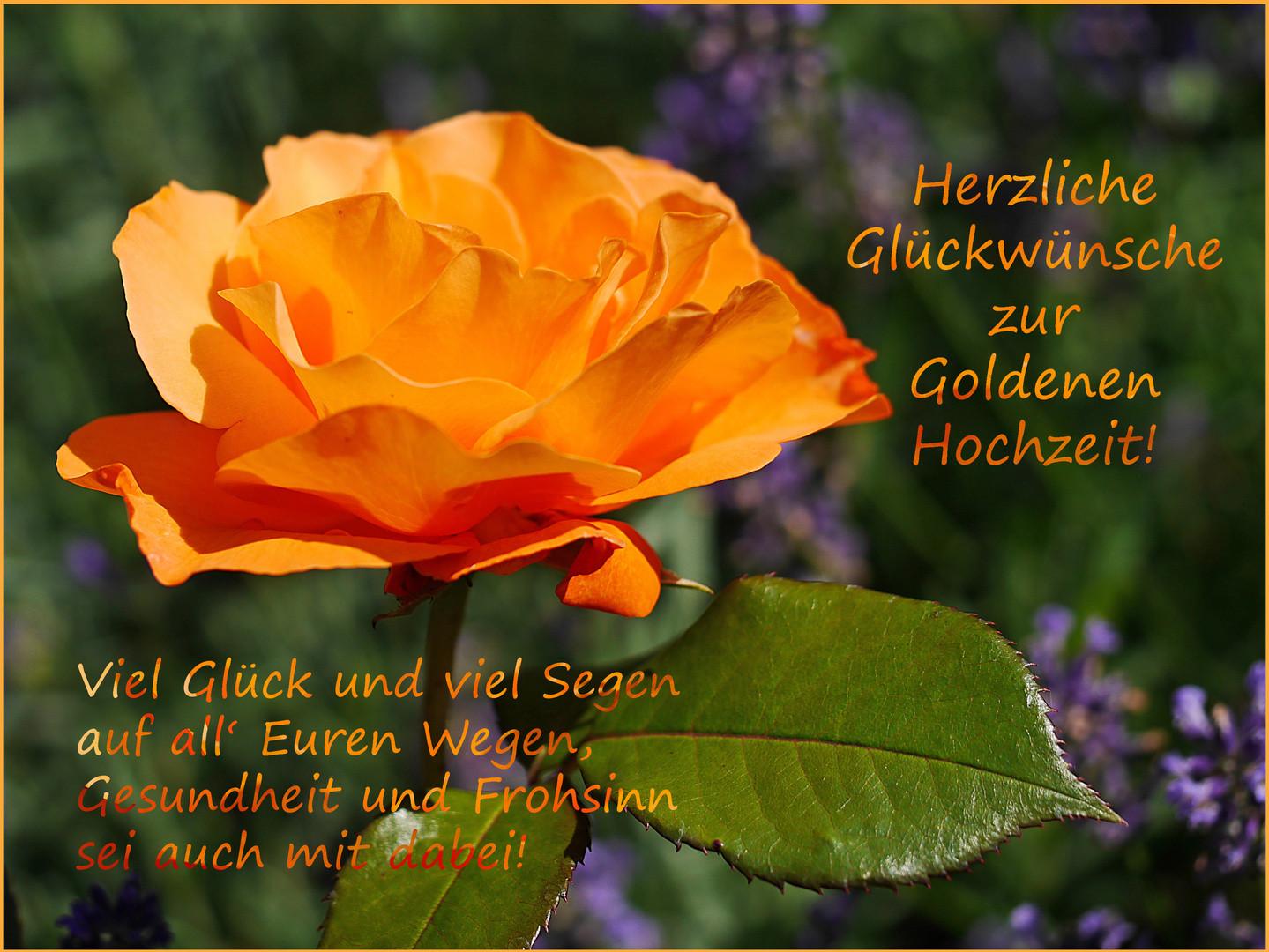 Glückwünsche Zur Goldenen Hochzeit  Herzliche Glückwünsche zur Goldenen Hochzeit Foto & Bild