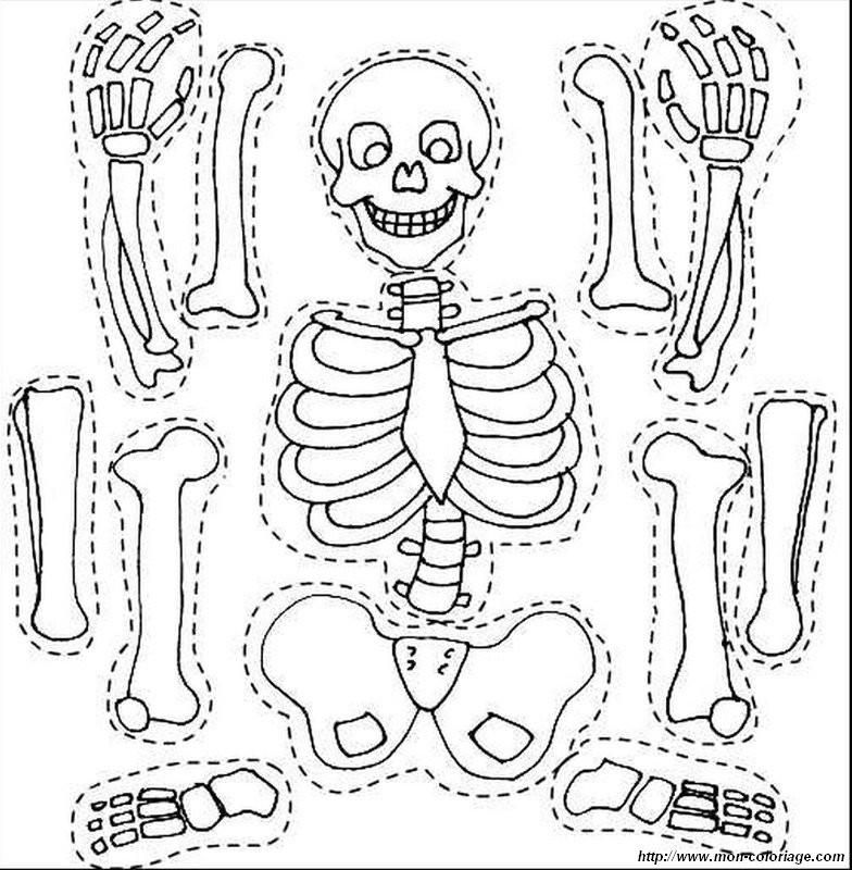 20 besten ideen halloween ausmalbilder skelett  beste