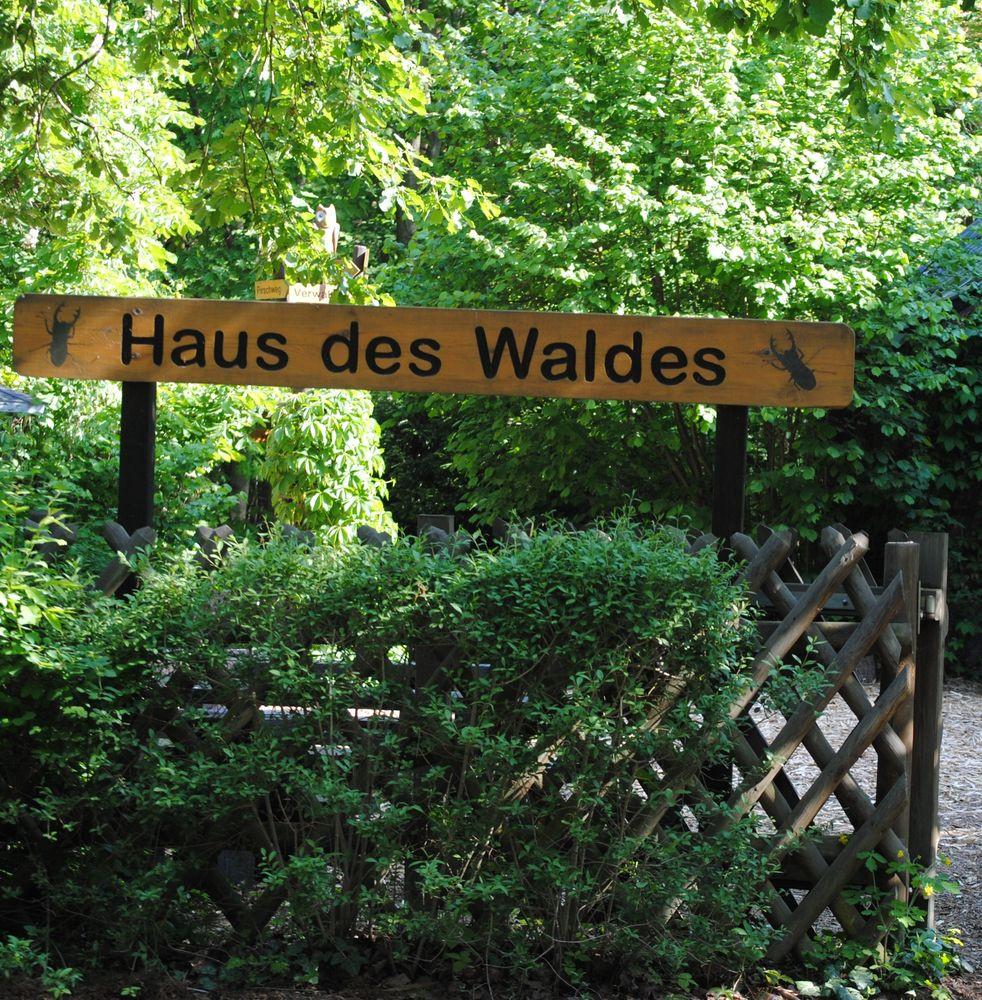 Haus Des Waldes  Herbstwerk im Haus des Waldes Naturpark Dahme Heideseen