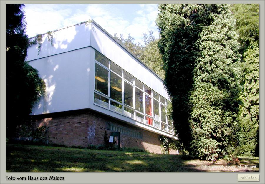 Haus Des Waldes  GRUGAPARK ESSEN Haus des Waldes