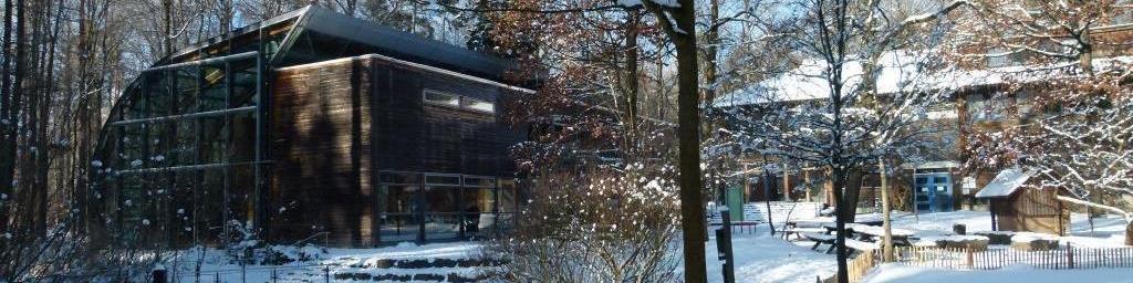 Haus Des Waldes  Haus des Waldes Innenhof