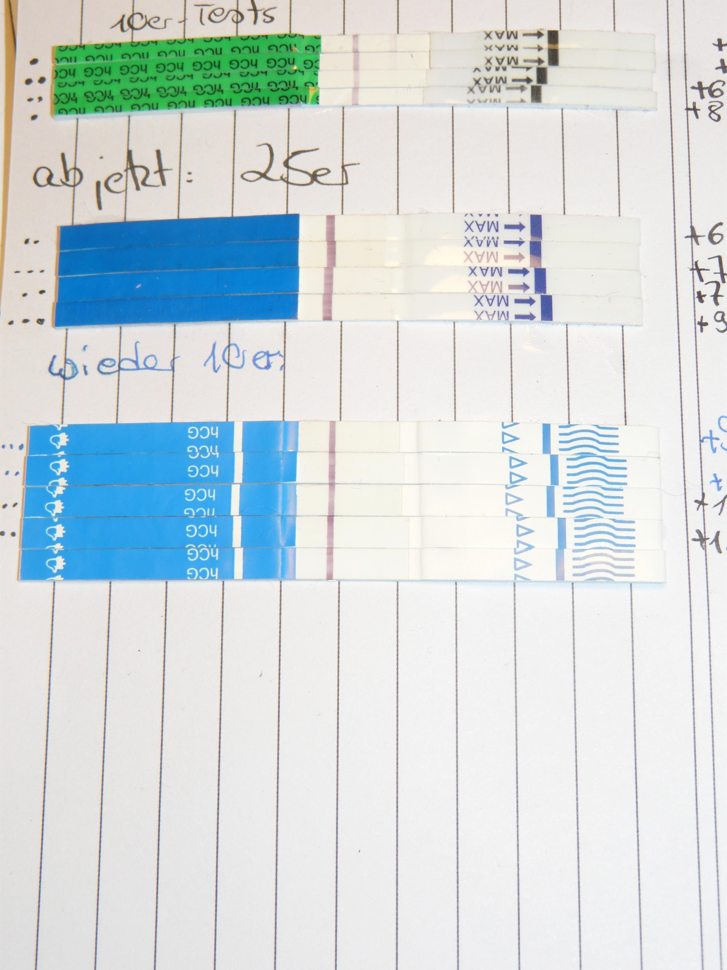 Hcg Wert Tabelle  September 2013