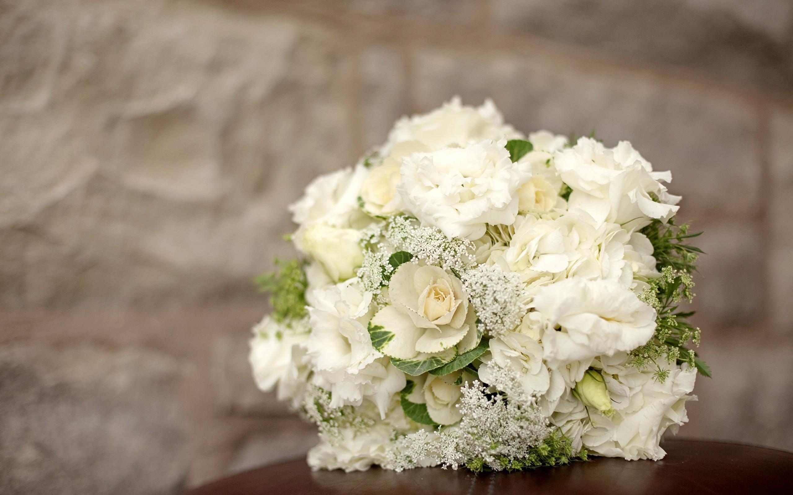Hintergrundbilder Hochzeit  Fotos von Hochzeit Sträuße Weiß Rosen Blumen Hortensien