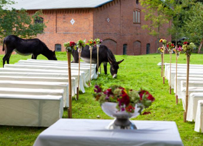 Hochzeit Bauernhof  Heiraten im Sommer – Hochzeit auf dem Bauernhof