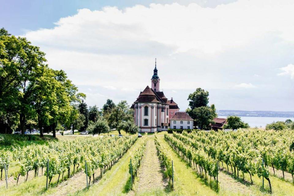 Hochzeit Bodensee  Hochzeit in den Weinbergen am Bodensee Hochzeitswahn