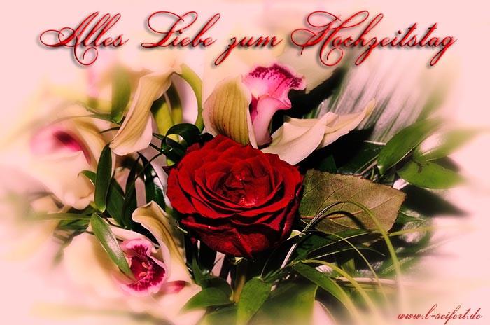 Hochzeit Grüße  Grüße zum Hochzeitstag für meinen Liebling Auf viele