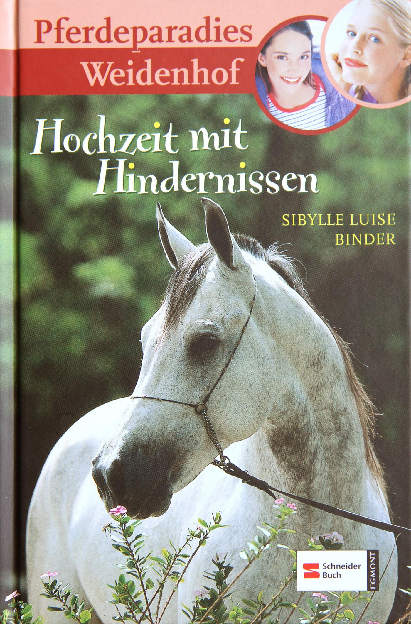 Hochzeit Mit Hindernissen  Hochzeit mit Hindernissen von Sibylle Luise Binder