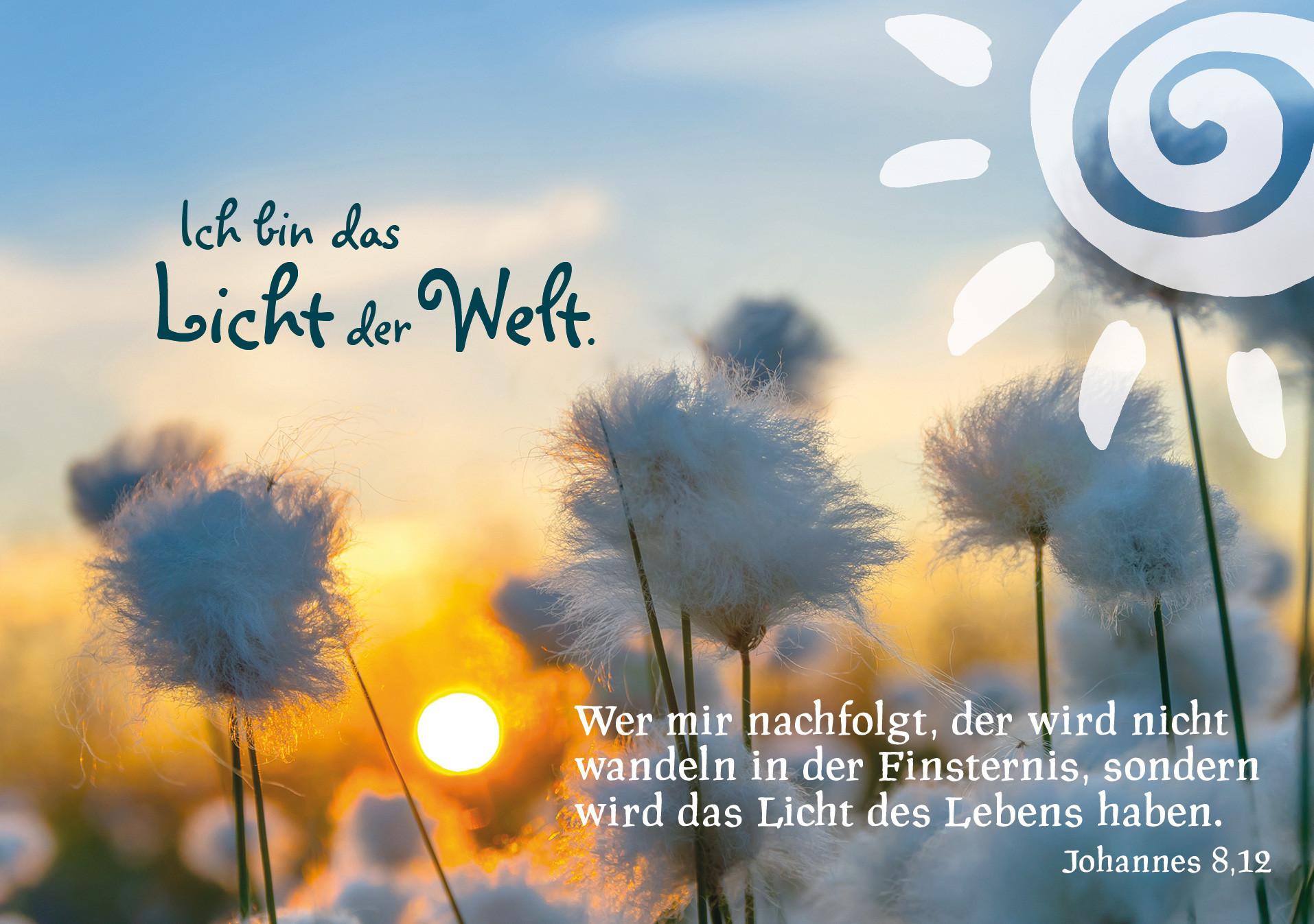 Ich Bin Das Licht Der Welt  4 Sonntag der Fastenzeit – Laetare