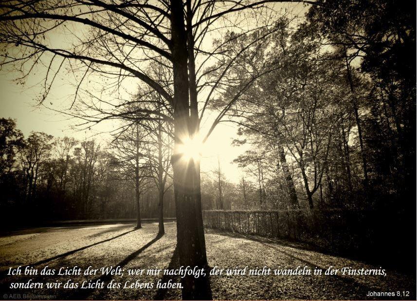 Ich Bin Das Licht Der Welt  sonstige Fotos Seelenfotos