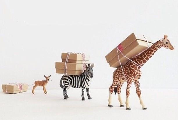 Kreative Geschenke  Geschenke schnell kreativ und originell verpacken fresHouse