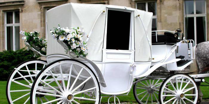 Kutscherspiel Hochzeit  Kutscherspiel komplette Geschichte Hochzeitsportal24