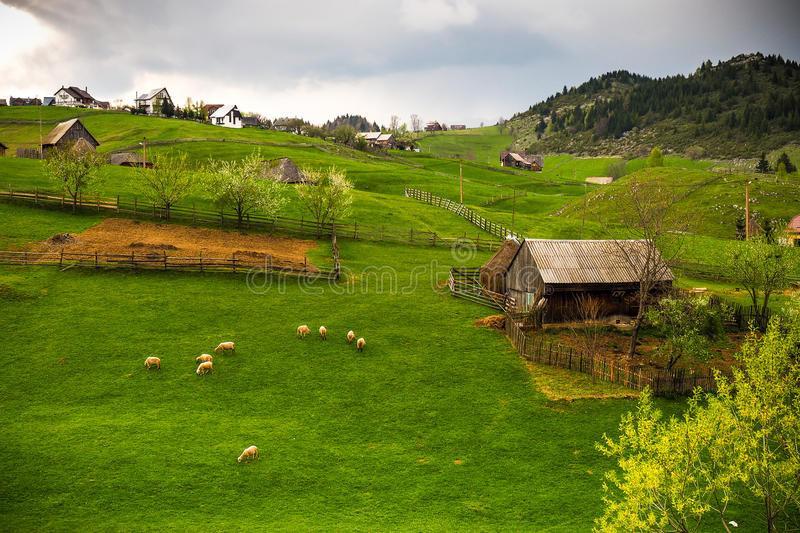Landschaft In Rumänien  Bergdorf In Rumänien Landschaft Stockbild Bild von