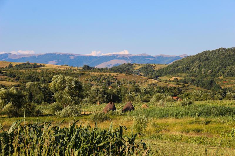 Landschaft In Rumänien  Landschaft In Banat Rumänien Stockfoto Bild von